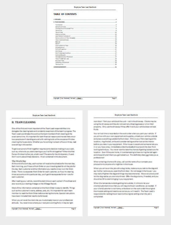 Cleaning Team Lead Training Manual